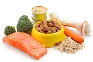 yellow bowl of dry pet food surrounded by raw and natural foods like salmon, oats, carrots and broccoli